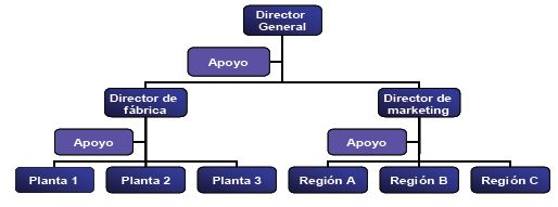 Estructura organizacional de una empresa funcional