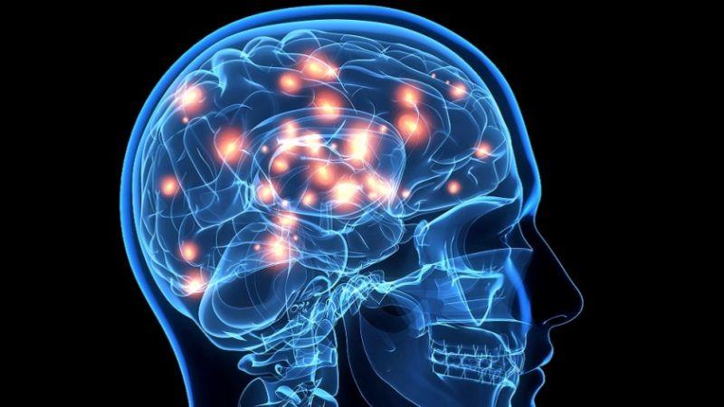 cerebro-gamers