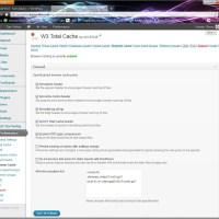 Performance Tuning a Hosted Wordpress Blog