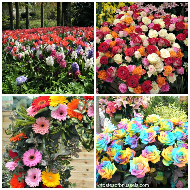 floralia3