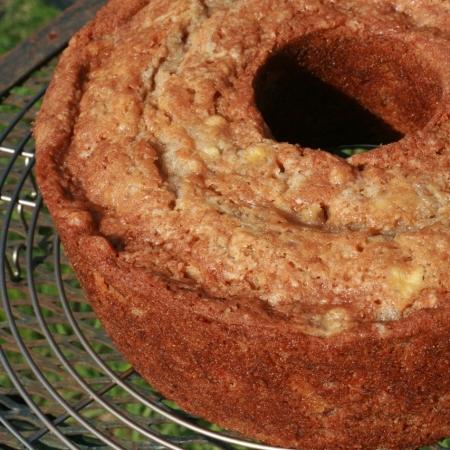 Paleo Dr. Bird Cake