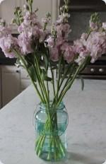 Guest Project — Make DIY Painted Mason Jars!!