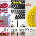 20 DIY Spring Projects