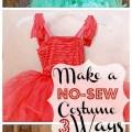 three $20 DIY Costumes