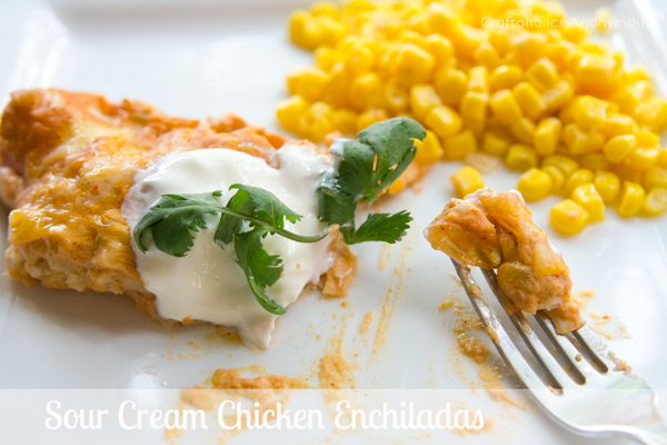sour-cream-chicken-enchiladas3