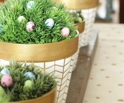 White-and-Gold-Herringbone-Pots-for-Spring-2-by-the-happy-housie-for-tatertots-and-jello