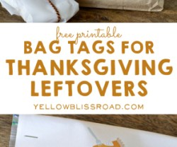 Bag-Tags-for-Thanksgiving-Leftovers