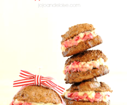 Gluten-and-Grain-Free-peppermint-patties-jojoandeloise.com-organic