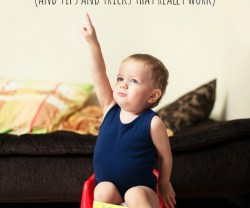 The One Thing You Need to Know To Make Potty Training Easier