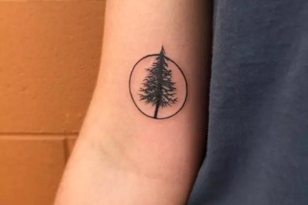 pine tree tattoo 33 650x650
