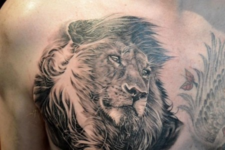 chest lion tattoo design