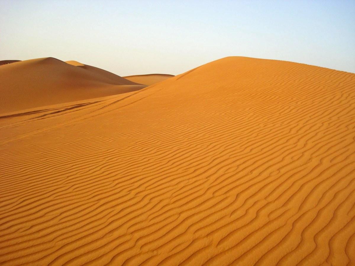 Desert Safari - Dubai, UAE