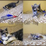 Da Bird Cat Toy – Best Toy For A Lazy Cat