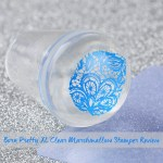 Born Pretty XL Clear Marshmallow Stamper Review