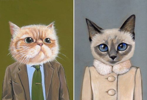cats-in-clothes-3