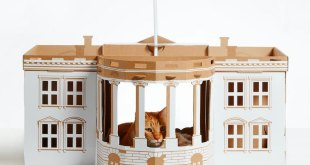 cardboard-cat-houses-pet-furniture-landmarks-poopy-cats-16