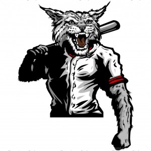 Wildcat Baseball Player Clip Art