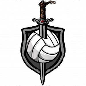 Viking Volleyball Vector