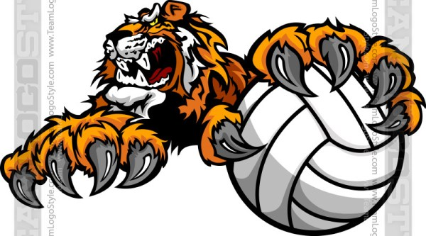 Tiger Volleyball Clipart