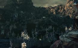 悪夢の辺境 毒地帯 Bloodborne ブラッドボーン