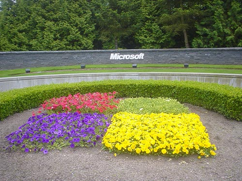microsoft windows 15 years celebrations11 Microsoft Windows Completes 25 Years Today!