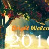Happy-New-Year-2016-Download-3D-Wallpapers-Free-2
