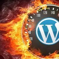 wordpress site optimization