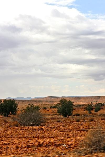 Desert-y