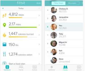 Fitbit App for iPhone 5S