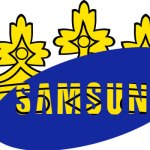 samsung-crowned