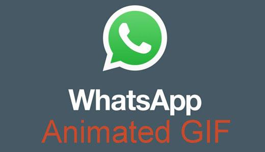 Da oggi si possono mandare le gif anche con WhatsApp