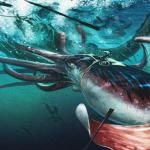 Edith Widder: How we found the giant squid