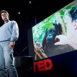 Willie Smits: How to restore a rainforest