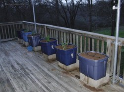 Small Of Vegetable Garden Planters