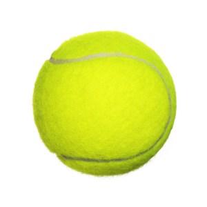 End of exercise End of exercise End of exercise Tennis Ball