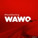 wawo-tv_m