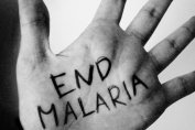 malaria, malaria day, signs, symptoms, fever, health, precautions, safety, health issues