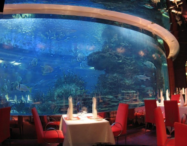 Underwater Hotel, Guinness Deep Sea Bar, Jump Studio, Itha hilton resort and spa, Maldives, Singapore, Indian Ocean, Hydropolis, Hauser, Water, Sea, Restaurants, Bar, Restaurant, Hotel, Spa, The Water Discus, Polish, Red Sea Star, Red Sea, Israel, Dubai, Burj Al Arab, Al Mahara, Submarine,