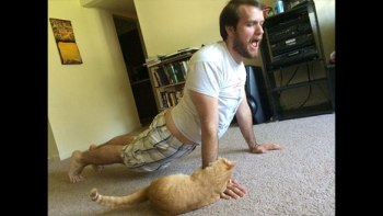 猫といるときはヨガをしてはいけない・・・こうなってしまうから