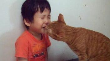 泣かないで!-泣いている子供を慰めるとっても優しいネコ