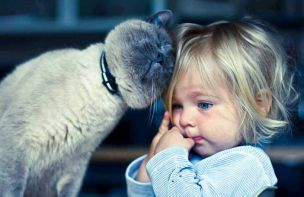 every-kids-need-pets-3__700