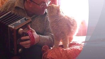 お父さん大好き♥アコーディオンを弾くお父さんにデレデレなネコさん!