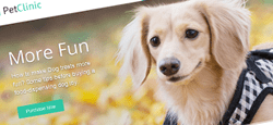 veterinarian pet rescue wordpress themes feature
