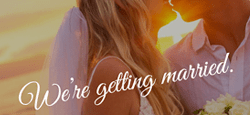 more best wedding wordpress themes feature