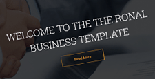 best business drupal themes feature