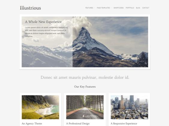 illustrious free minimal wordpress themes