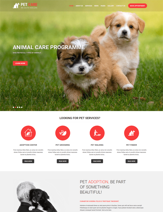 pet care pets vets wordpress themes
