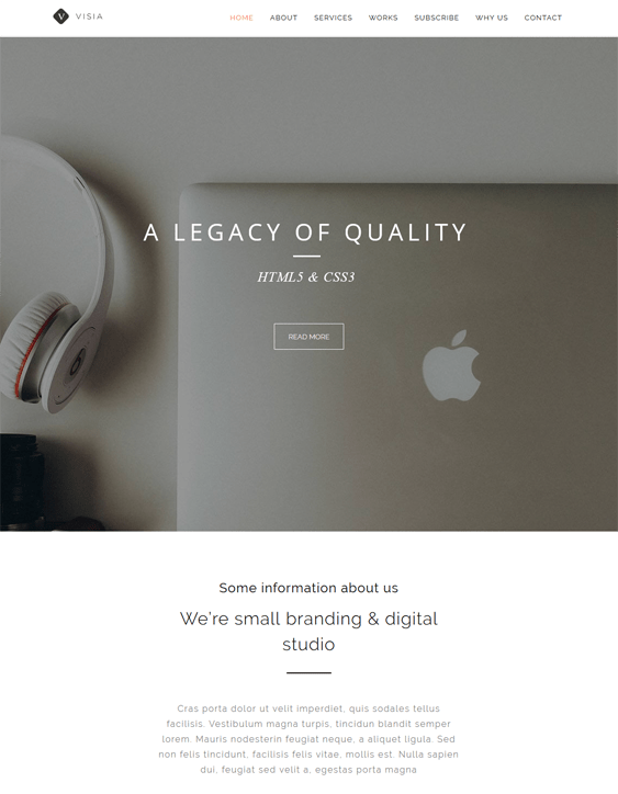 visia landing page wordpress themes