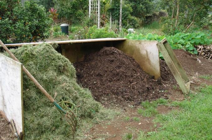 DSC00118-compost
