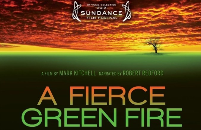 a fierce green fire web image